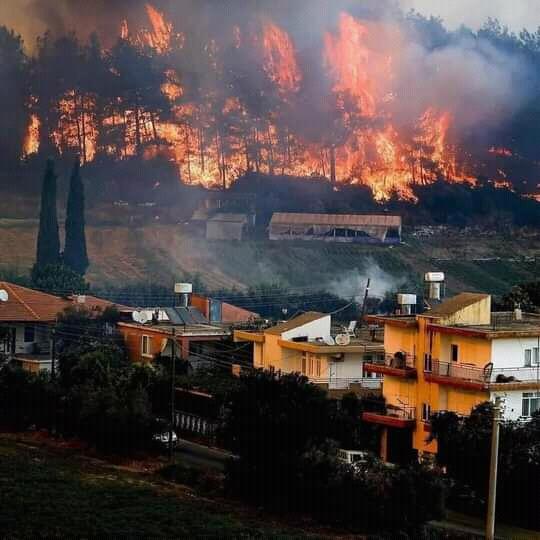 Kebakaran Hebat di Turki,  4 Orang Tewas 126 Bangunan Rusak Berat