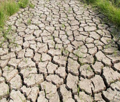 BMKG Ingatkan Sejumlah Wilayah Indonesia akan Hadapi Kekeringan Meteorologis